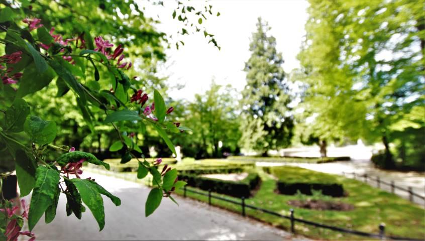 park-południowy-wroclaw
