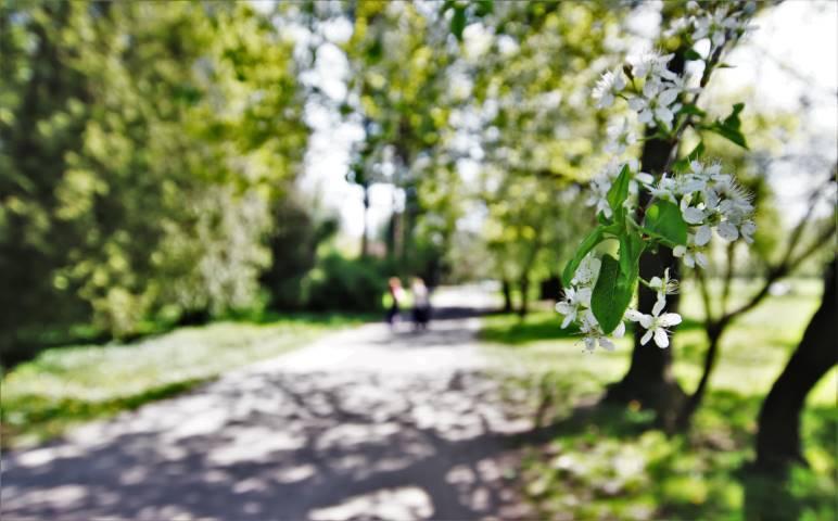 park-grabiszynski-wroclaw
