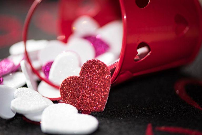 Zakochaj si w bibliotece | foliagefrenzy.com